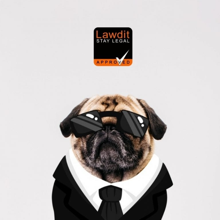 pug with a suit on and shades